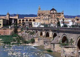 Puente Romano + Visita Guiada + Almuerzo