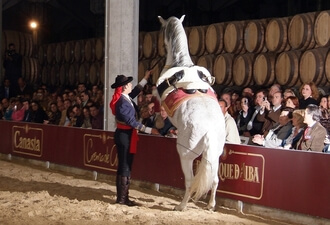 Espectáculo de caballos